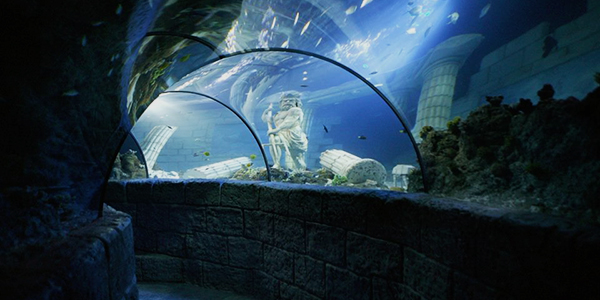 InsidePorto_Attractions_Sea Life