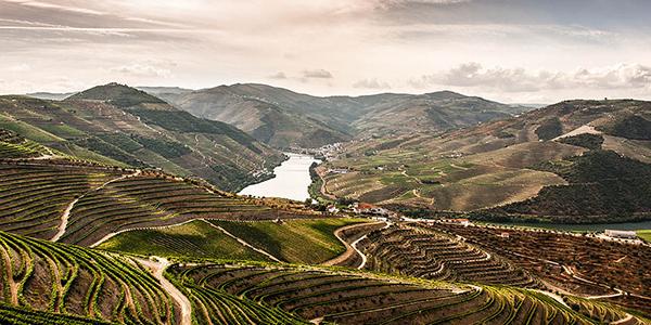 InsidePorto_Top10_DouroCruises
